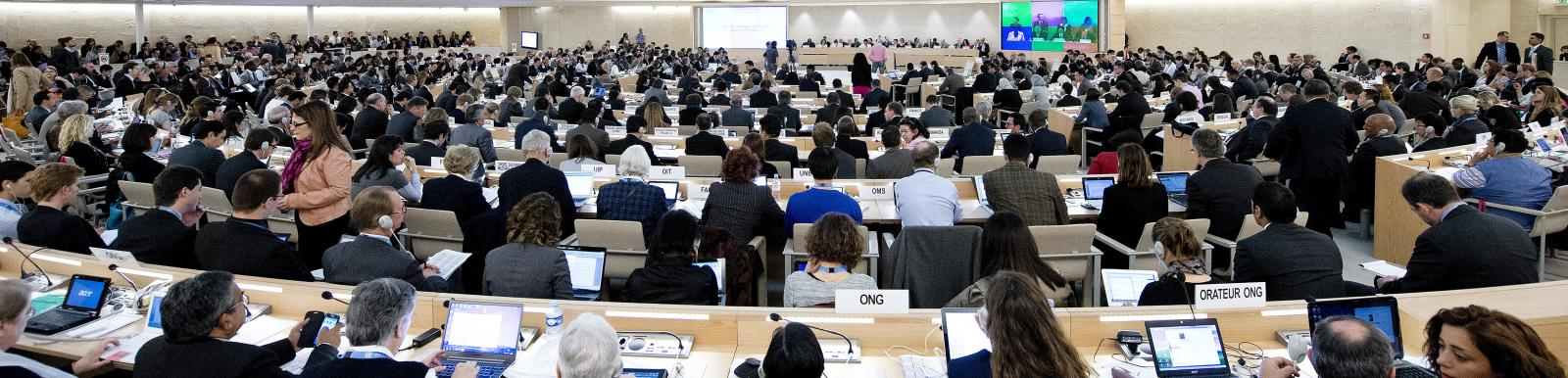 Human Rights Council Opens 23rd Session, Geneva, May 2013